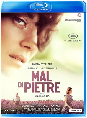 Mal Di Pietre (2016).avi BDRiP XviD AC3 - iTA